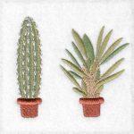 cactus machine embroidery designs